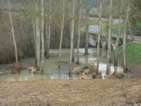 inondations charentois fevrier 2013